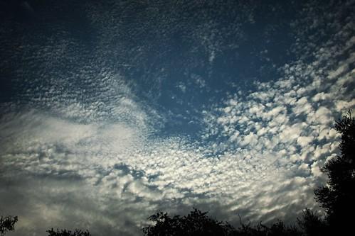 Cloudy Thursday