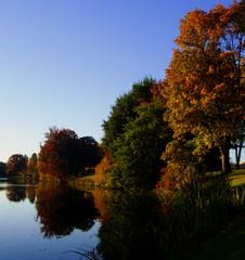 Autumn in Tree City, USA