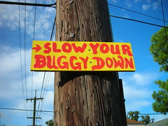 Slow Your Buggy Down