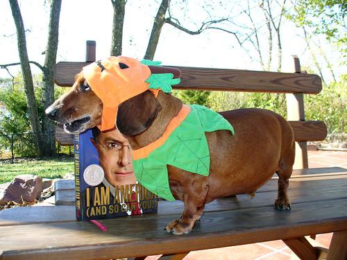 2007-10-19 - Ralphie the Pumpkin - 0034