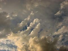 gathering rain. (susan *tt*) Tags: sky clouds canon canonpowershots3is