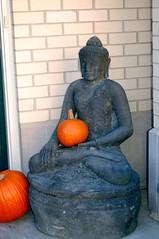 The Buddha arrives