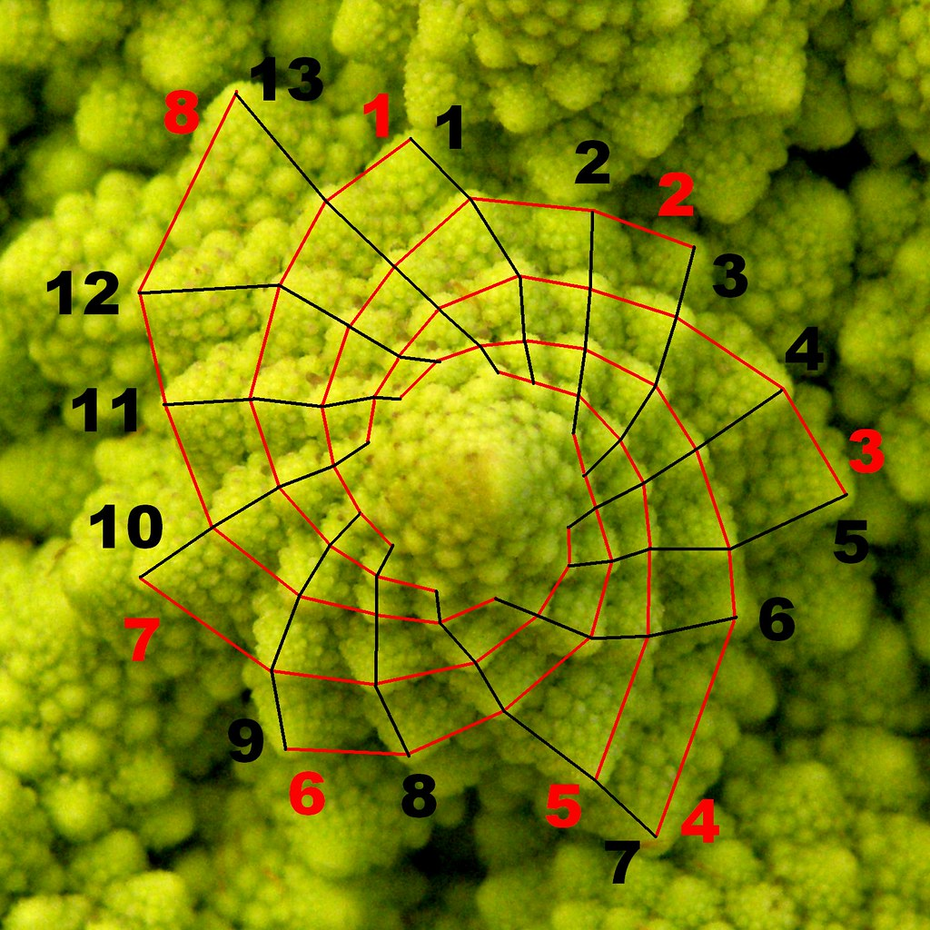 Fibonacci?