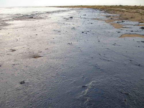 oil washed up on an ocean beach
