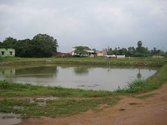Temple tank created at the behest of a Devadasi