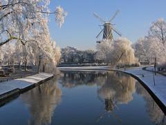 "Leiden (Eisbeertje) Tags: winter holland nature de leiden sneeuw nederland natuur centrum zuiholland ""molen valk"""