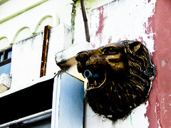 Urban ruined lion