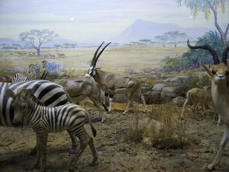 another diorama