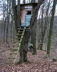 Baumhaus oder Hochsitz? (happycat) Tags: tree forest germany j thringen birdhouse jena treehouse manger raisedstand wald baum hochsitz naturschutzgebiet raisedhide vogelhaus hochstand highseat nsg baumhaus wildftterung wildfutter cospeda futterkrippe ansitz windknollen jenacospeda nsgwindknollen ffhgebiet faunaflorahabitatgebiet