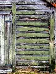 Mosete uthusvegg - Wall of a shed with moss (erlingsi) Tags: norway wall moss decay shed norwegen shack oc derelict 6100 decaying volda norvege sunnmre vegg mose uthus noreg mreogromsdal skandinavia abbandono veggen abandonedfarm erlingsi erlingsivertsen decadncia vg forlatt forfall eyi vassbotn  voldabackstage ikulissne ikulissene