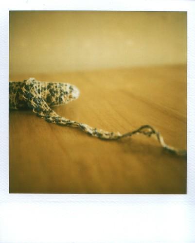 ribbon