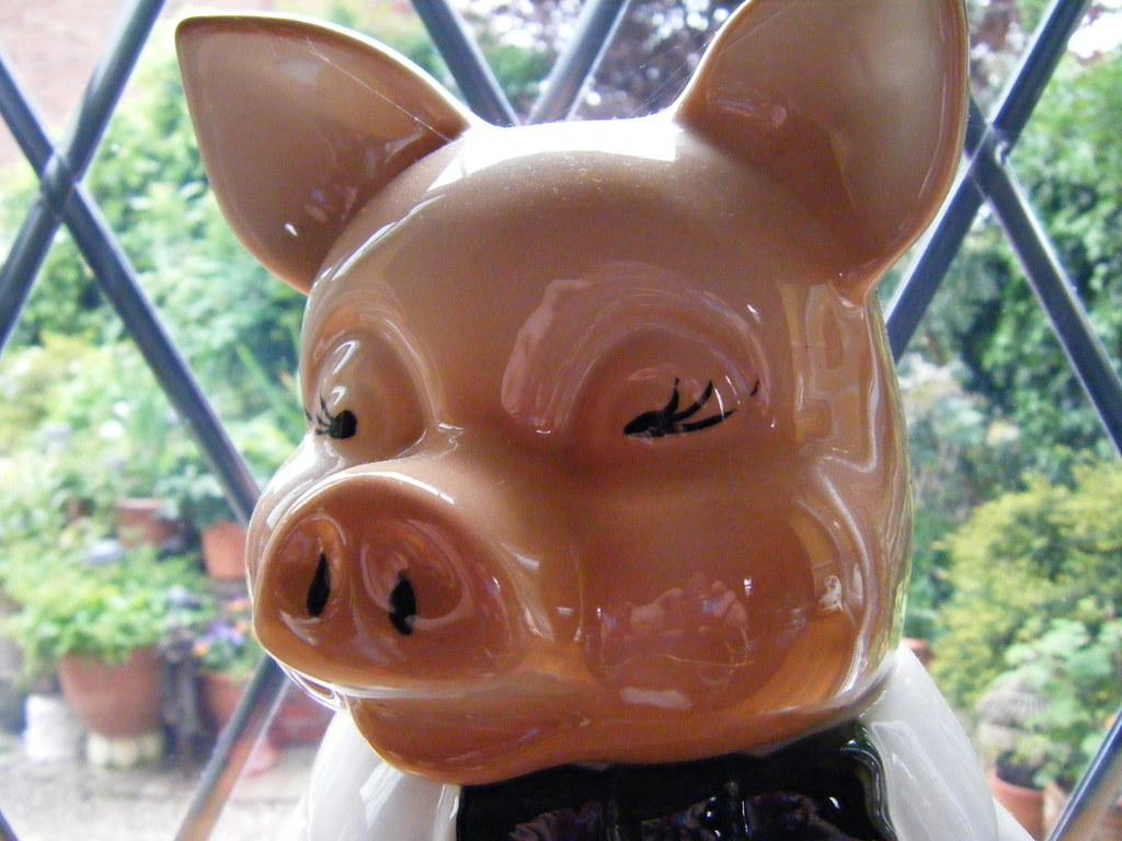 PIG FACE!!