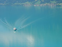 Lake of Brienz (Iris_14) Tags: mountain green nature berg montagne landscape schweiz switzerland suisse vert grn paysage berneroberland colorphotoaward oberlandbernois