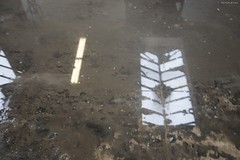 . (byrdhouse) Tags: atlanta concrete dex pressurewasher