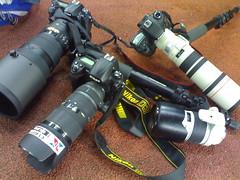 Nikon, D3, D300, AF-S 300mm f/2.8 VR II N, Sigma 70-200mm f/2.8 HSM EX DG, manfrotto monopod 680B, Canon EOS 7D, EF 400mm f/5.6 L, 70-200mm f/2.8 L (Hafizudin) Tags: nikon d3 70200mm d300 400mm nikond3 canoneos7d sigma70200mmf28hsmexdg manfrottomonopod680b nikonafsnikkor300mmf28nvrii 300mmf28vriin