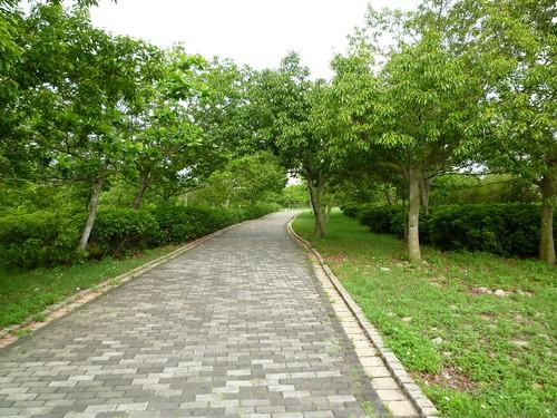 taichung-metropolitan-park-30
