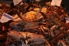 @ barcelona market (gepiblu) Tags: barcelona fish saint st joseph romy spain san market crab espana mercado peixe pescado mercato barcellona spagna pesce cangrejos bancarelle granchi gepiblu