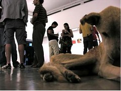 perro museo