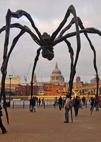 spider at tate