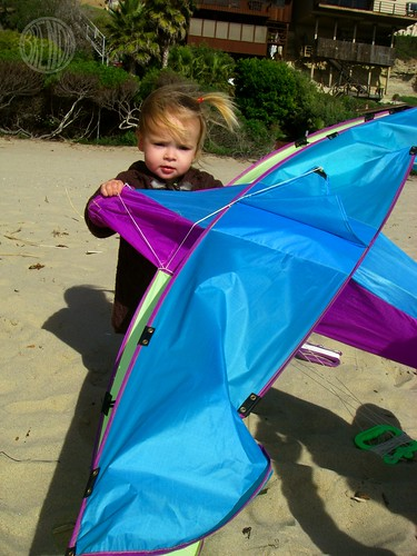 Baby Bug's Birthday Kite!