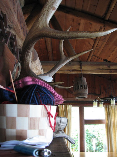 My Great-Grandfather Killed Lots Of Antlered Things