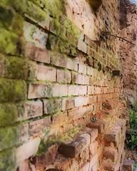 Camperdown Mill Brick
