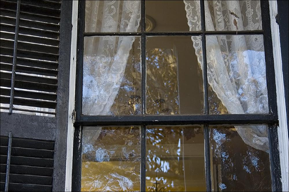 parlor window ©2008 RosebudPenfold