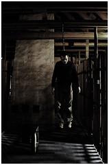 depend (derDommy) Tags: light man dead cord death licht chair bars shoes die body suicide young hose mord soil shade attic murder trousers mann tot tod schatten schuhe stuhl waistcoat junge chap boden dachboden sterben strick hängen leiche selbstmord abhängen balken depend weste kerl rumhängen leblos erhängt liveless erhängen rumhaengen erhaengen leichnam erhaengt stealingshadows hangcorpse