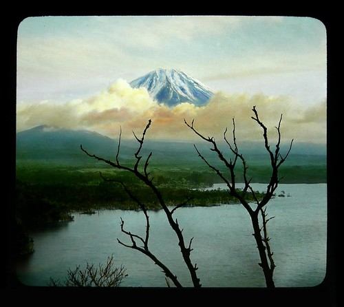MT. FUJI through DEAD TREES and VEILING CLOUDS