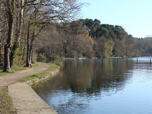 GC1E9H5 Basingstoke Canal - Mytchett Lake (Traditional Cache