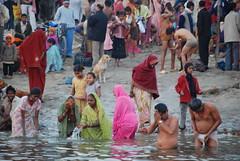 morning plunge (TylerYoga) Tags: city morning india river early blessing holy varanasi bathing hindu 2008 washing crowds ganges