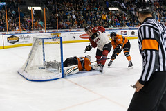 "Missouri Mavericks vs. Quad City Mallards, February 18, 2017, Silverstein Eye Centers Arena, Independence, Missouri.  Photo: John Howe / Howe Creative Photography • <a style=""font-size:0.8em;"" href=""http://www.flickr.com/photos/134016632@N02/32654245050/"" target=""_blank"">View on Flickr</a>"