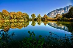 Riflessi sulle Torbiere (giannipiras555) Tags: oasi natura iseo lago autunno riflessi landscape collina fiori piante nikon