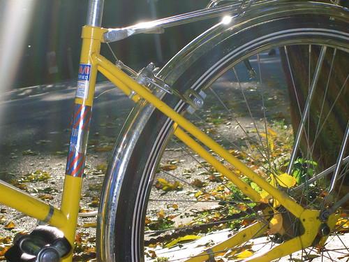 Chi Bike