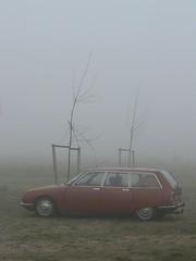 Misty morning.... (azu250) Tags: mist fog rotterdam harbour citroen ds meeting cx ami 2cv ente gs eend ccr 2pk deuche