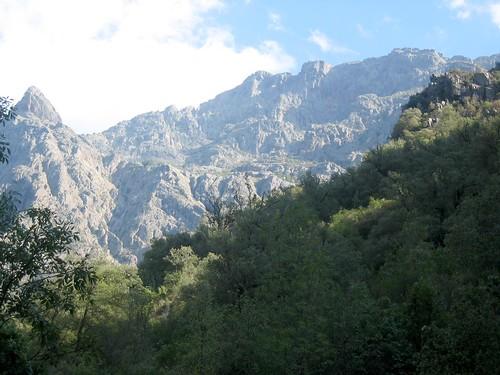 Depuis la piste de la prise d'eau : vue du versant Scaffone