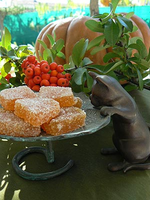 pâtes de fruits 2.jpg