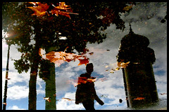 Paris, Place de la Bastille (Calinore) Tags: street city man paris france reflection tree water leaves silhouette puddle eau reflet getty arbre iledefrance ville idf feuilles homme flaque ecenter colonnemorris ecentermum selectionneespargetty