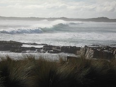 Marrawah Tasmania (Waltzing Broomhilda) Tags: surf tasmania tassie marrawah