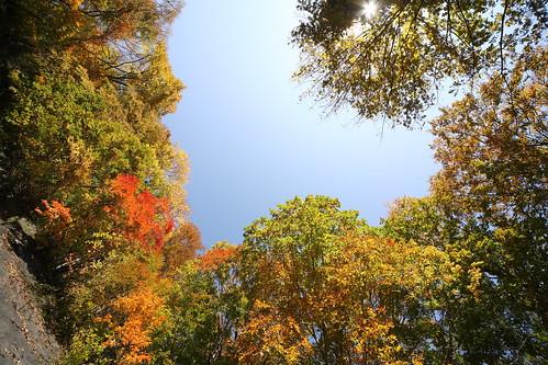 一の倉沢の秋1