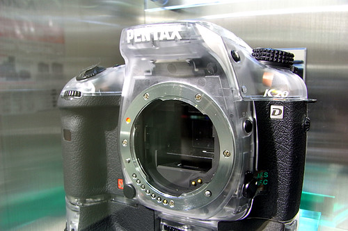 PENTAX K20D Skeleton model