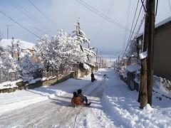 My Street (onbangladesh) Tags: winter snow kids georgia fun sledding sled kucha telavi kakheti sulkhanishvili komkavshiri
