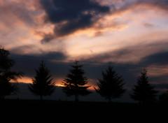 spring storm orton (jodi_tripp) Tags: trees storm nature clouds digitalart powerlines orton susnset joditripp challengeyouwinner wwwjoditrippcom photographybyjodtripp