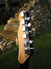 Teisquire - headstock (Tuuur) Tags: telecaster goldfoil teisco tuuur tuuursguitars teiscocaster teisquire