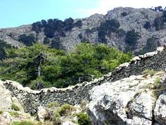 Muret de démarcation vers Bocca di Felce en été
