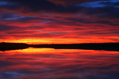 Till the End of Time (flopper) Tags: sunset sky reflection water clouds coyotehills fremontca interestingness10 interestingness3 flopper interestingness98 specnature specsky vision100