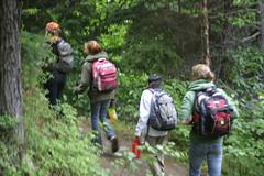 On the trail (kyle.leboeuf) Tags: alaska crescentlake