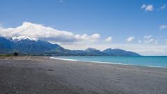459 - Baie de Kaikoura