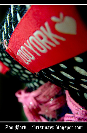 Zoo York Sneakers