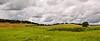 Sevillian pastureland (IV) (Artigazo ) Tags: panorama españa canon landscape sevilla weide spain espanha riverside paisaje panoramic seville andalucia explore pasto andalusia paysage grassland landschaft vega cenário espagne séville paesaggio spanien spagna andalousie landschap herbage panoramique ribera landskap ilex dehesa panorámica sevilha holmoak encina chaparro azinheira steineiche pascolo panorámico grasland panorâmico pastureland pâturage explored carrasca eos450d leccio chênevert 241054lis ilice sevillan panoramisch hispalis sevillában artigazo pascolativo sevillianpastureland